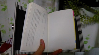 KIMG0498-63903.JPG