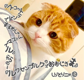 S__29597709.jpg