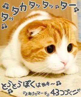 S__3448840.jpg