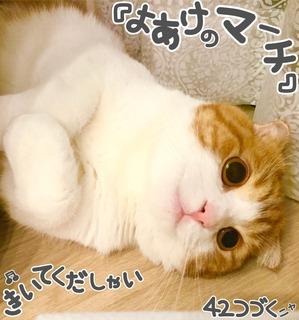 S__3448841.jpg