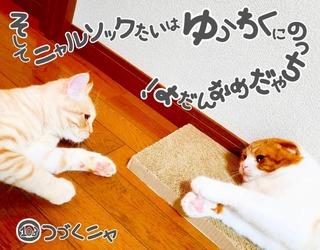 S__48283653.jpg